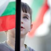 Свещената крава на българското образование