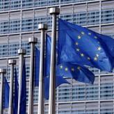 Капка Тодорова: Пандемията има всички шансове да направи ЕС по-силен